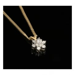 9ct Yellow Gold 0.75ct Diamond Cluster Pendant & Chain